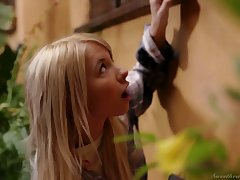Wolf Kenzie Reeves dives abysm in wet pussy of interesting girlfriend